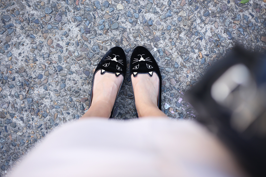 mademoiselle charlotte olympia kitty flats from where i stand