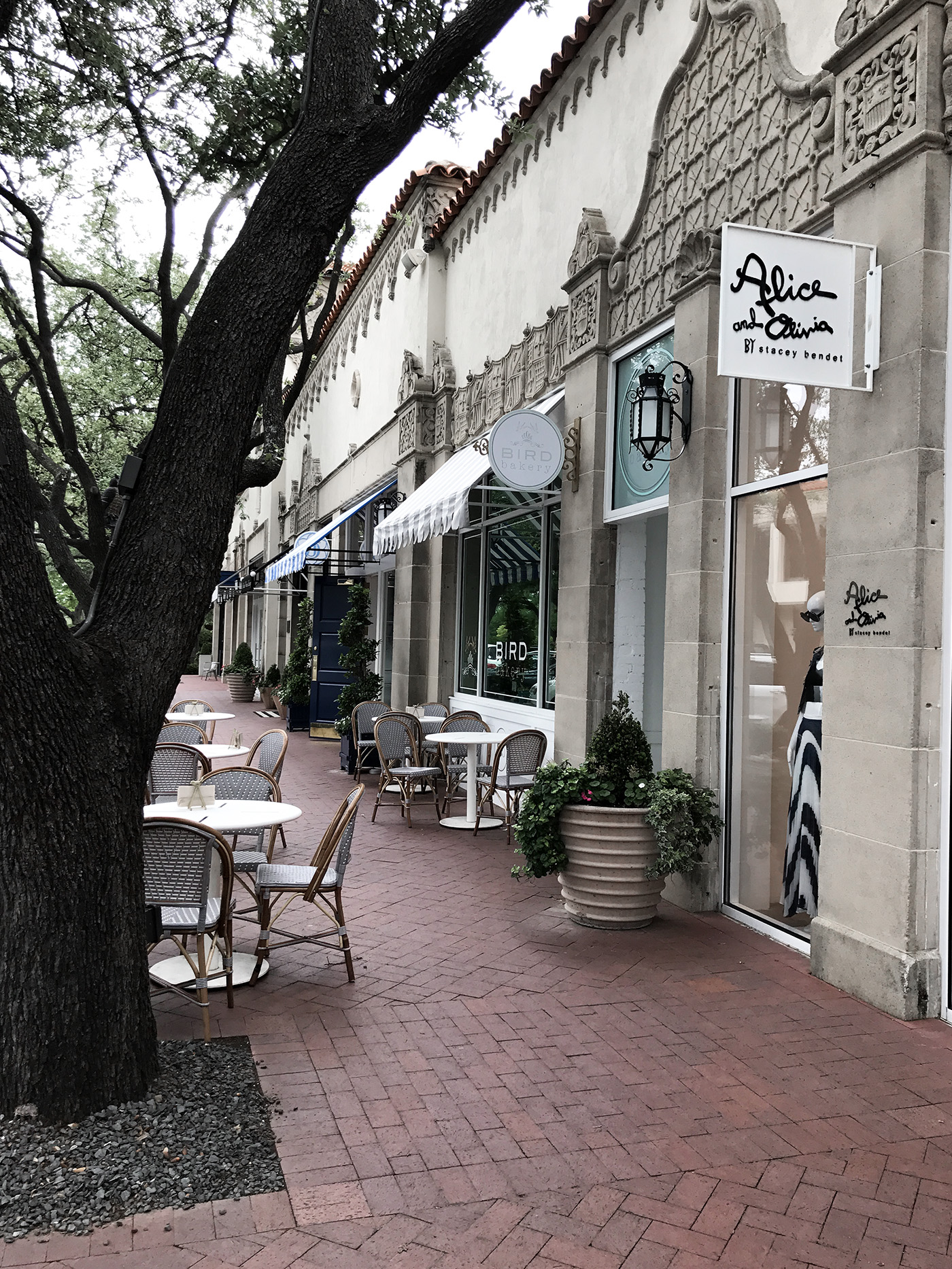 dallas travel guide shopping highland park village